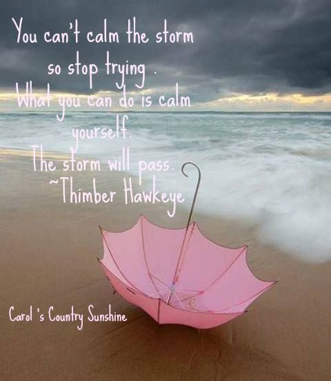 1f22092d4f15786329ef4f3f24838dae--quotes-about-storms-pink-umbrella