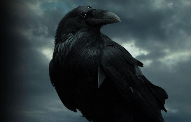 O Raven..